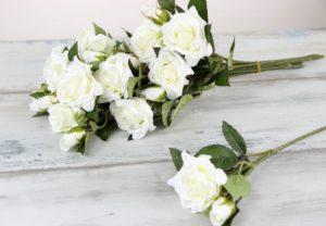 Róże na gałązce